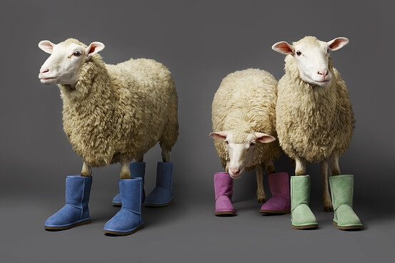 10 Shoes to wear OTHER then Uggs