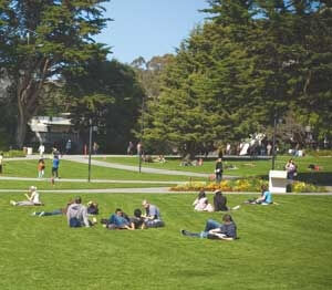 Quad 101: Tips for Taking Advantage of Your Campus Green