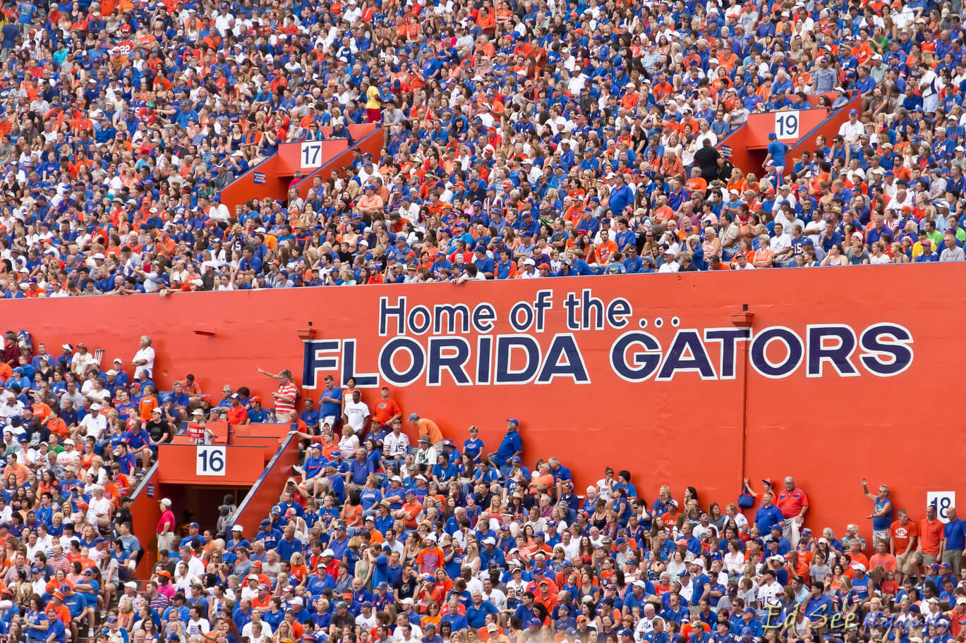 the official university of florida bucket list