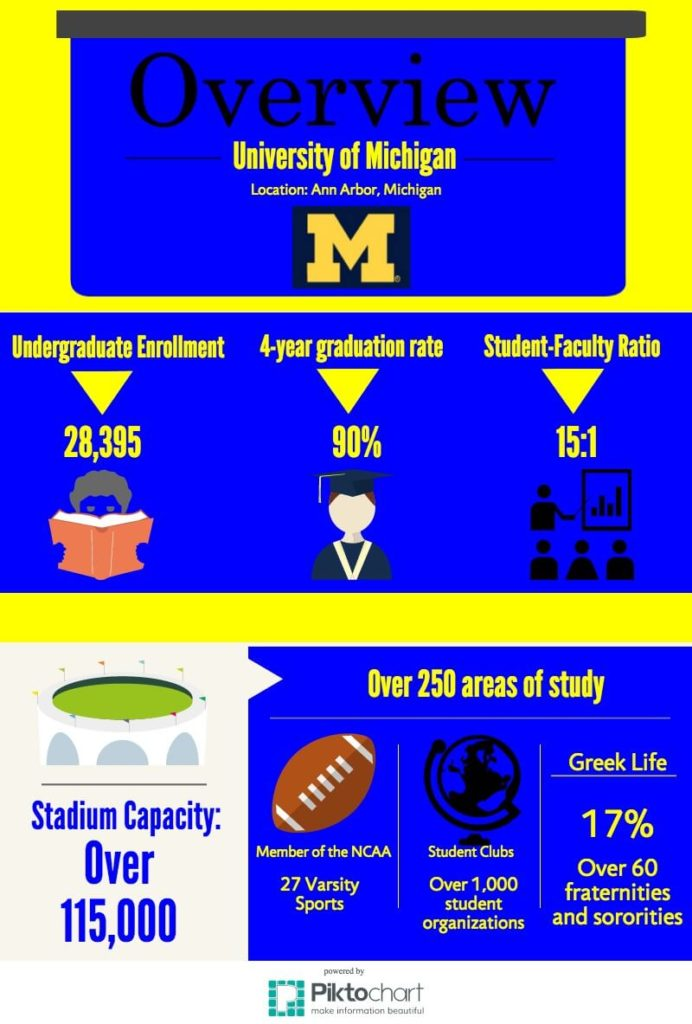 Michigan Infographic