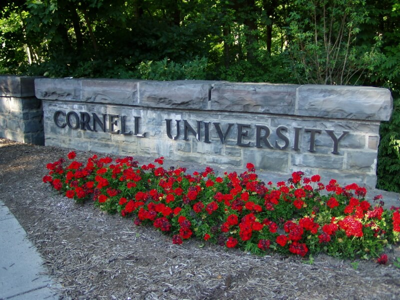 What is Cornell University like for students?