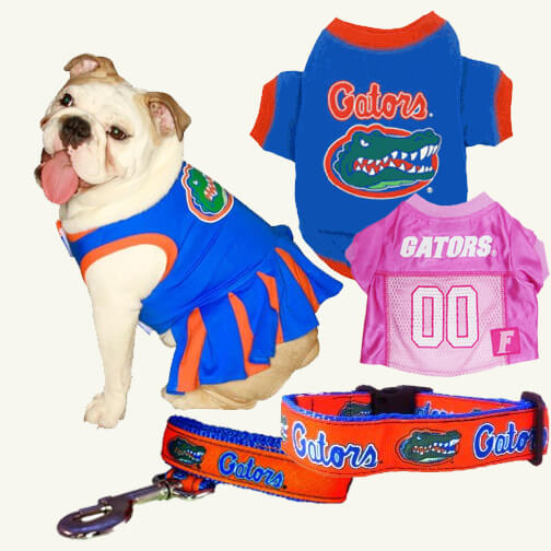 UF Game day apparel