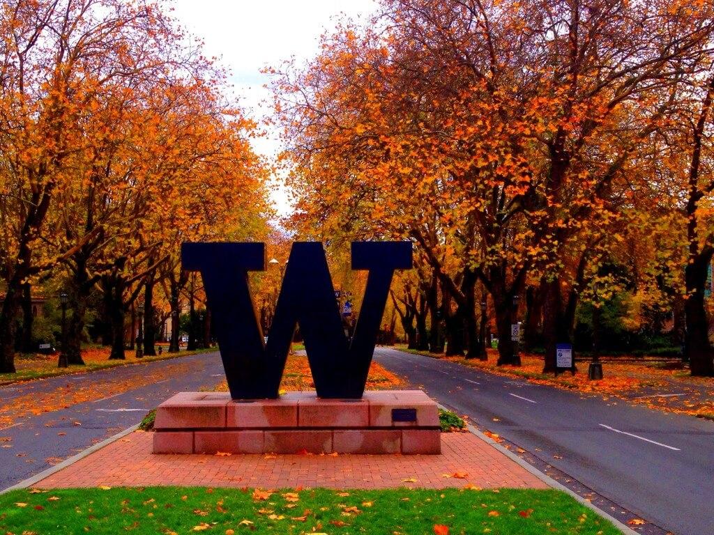 5 Things the University of Washington Huskies are Thankful ...