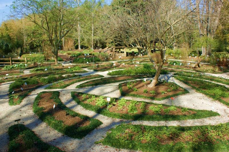 kanapaha_herb_garden_original