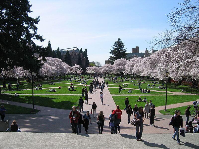 CM\'s Guide to the University of Washington-Seattle - College Magazine