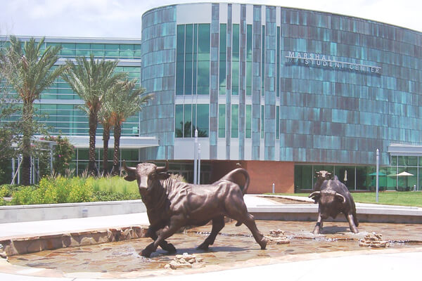 Cm S Guide To The University Of South Florida College