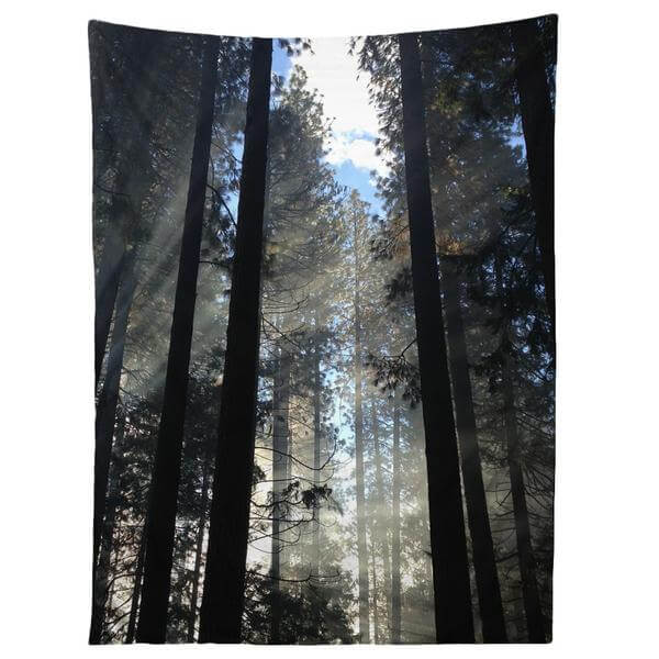 cmshoplight_through_tapestry_grande