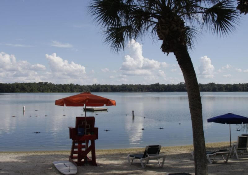 Lake Wauburg at UF is a relaxing place to study