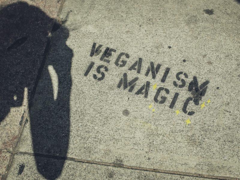 vegan-friendly campuses