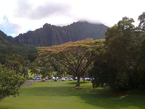 Hawaii Pacific University won't bring winter blues.