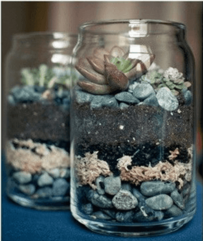 DIY Succulent Planter for your Hipster Friend