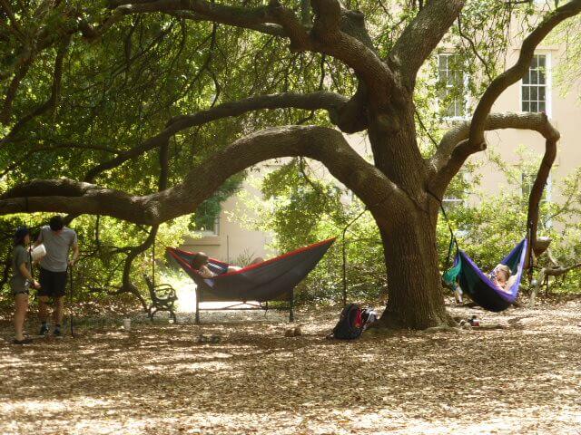 Those Eckerd hammocks are so comfortable.