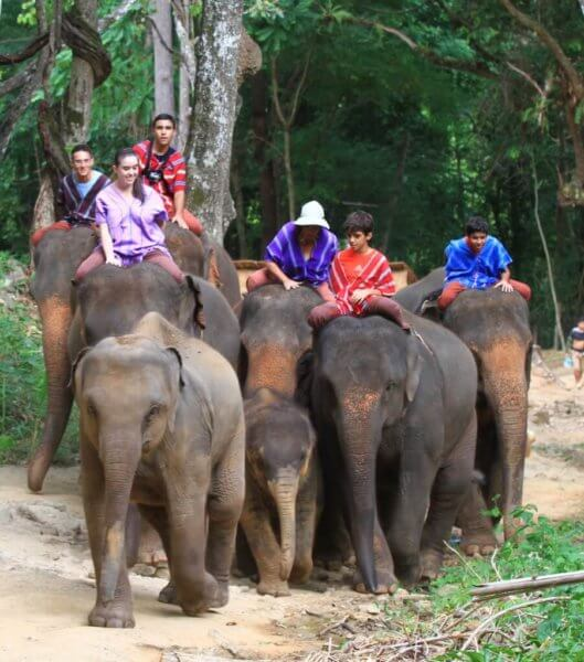 Experience adventures riding an elephant.