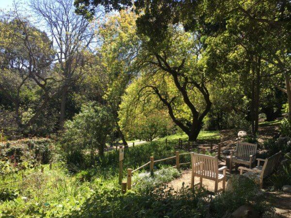 UCLA Botanical Garden