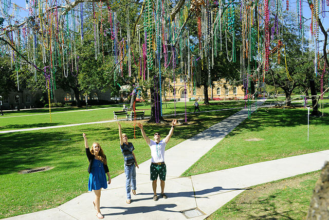 tulane bead tree a quad