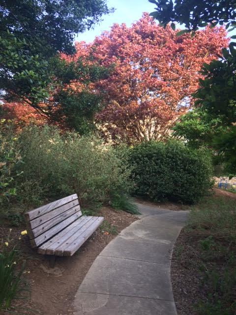 gardens at american university