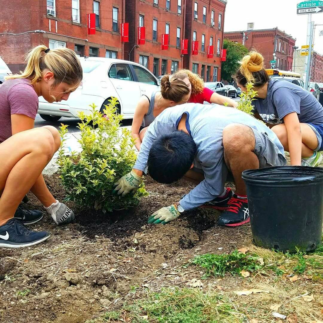 Temple Community Garden members planting on campus