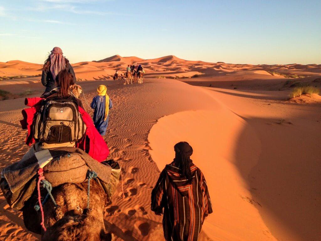 Riding camels in Sahara Desert