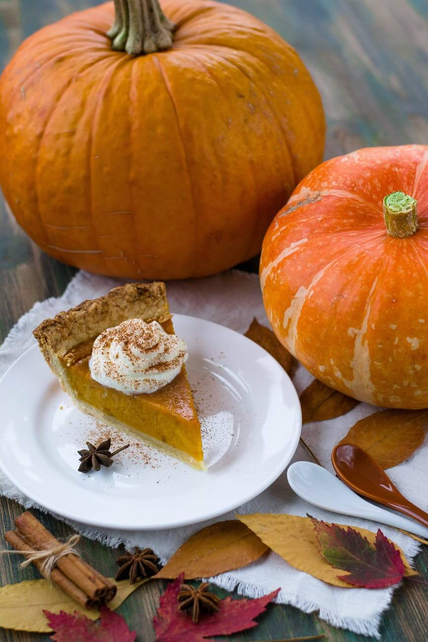 pumpking pie pudding