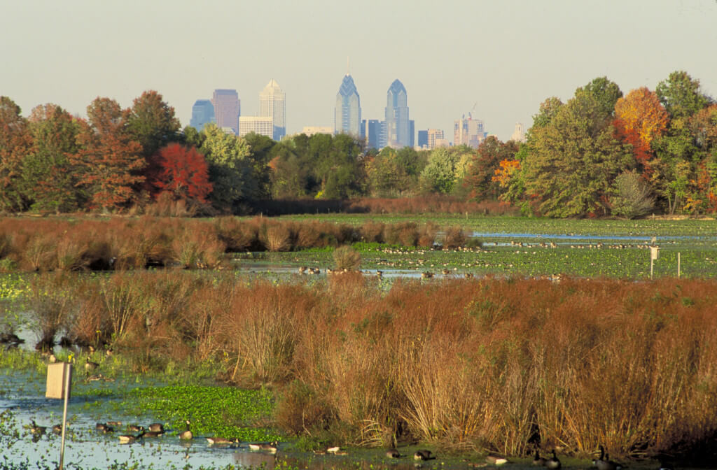 John Heinz Refuge things to do in philadelphia