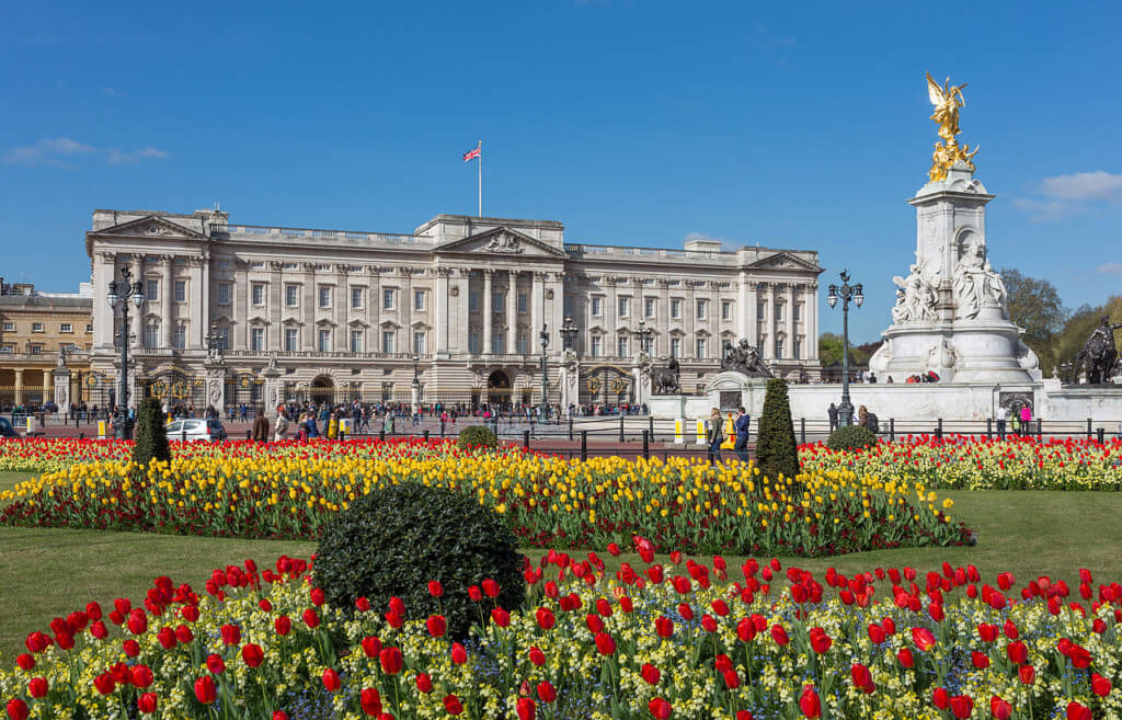 buckingham palace things to do in london