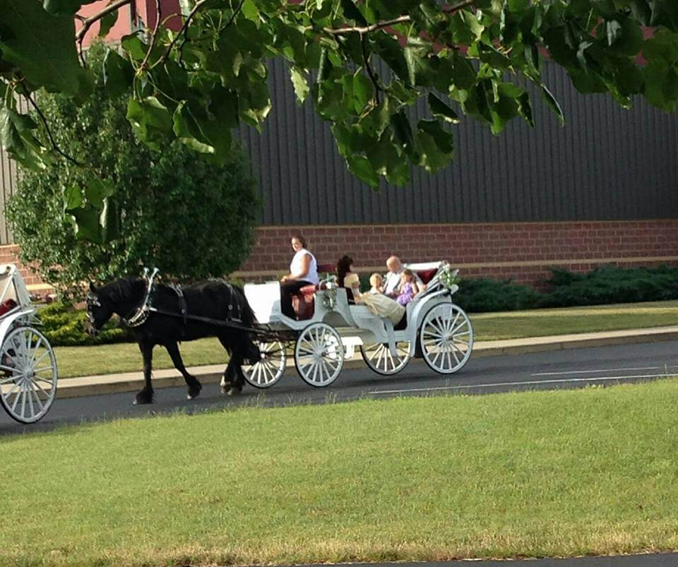 carriage things to do in fort wayne