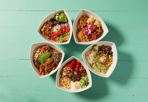 Various bowls from Tocaya (UCLA Food)