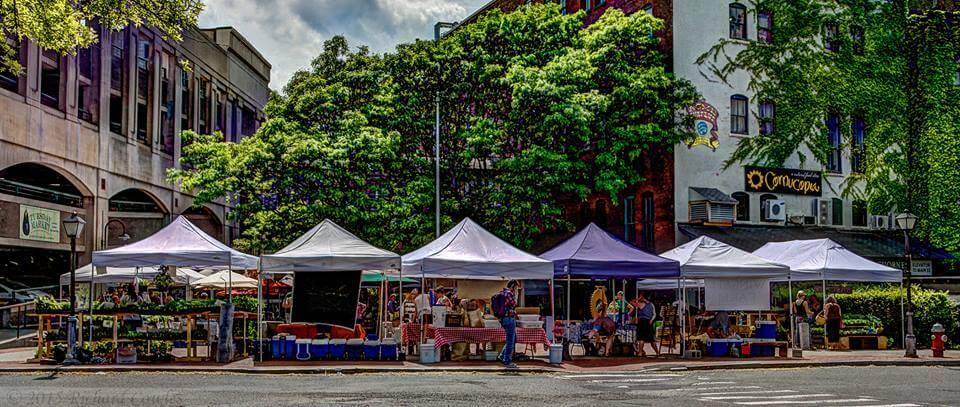 northampton farmer's market
