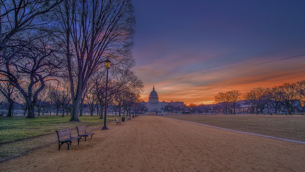 national mall things to do in dc at night