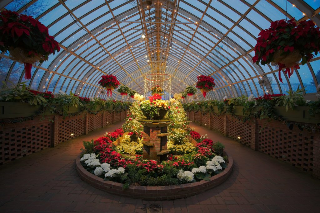 u.s. botanical gardens things to do in dc at night