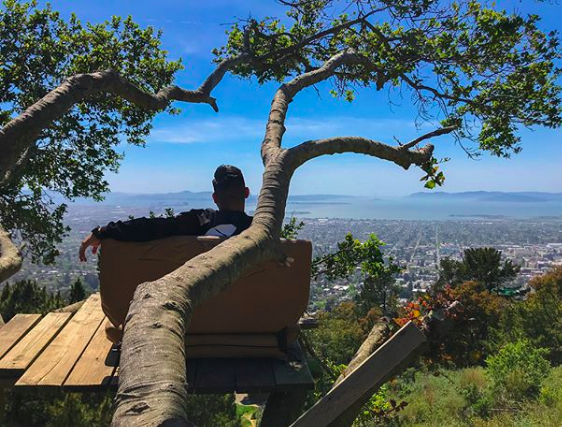 berkeley lookout
