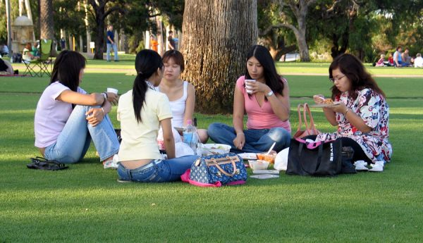 friends gathering on a green somewhere it's okay to not be okay