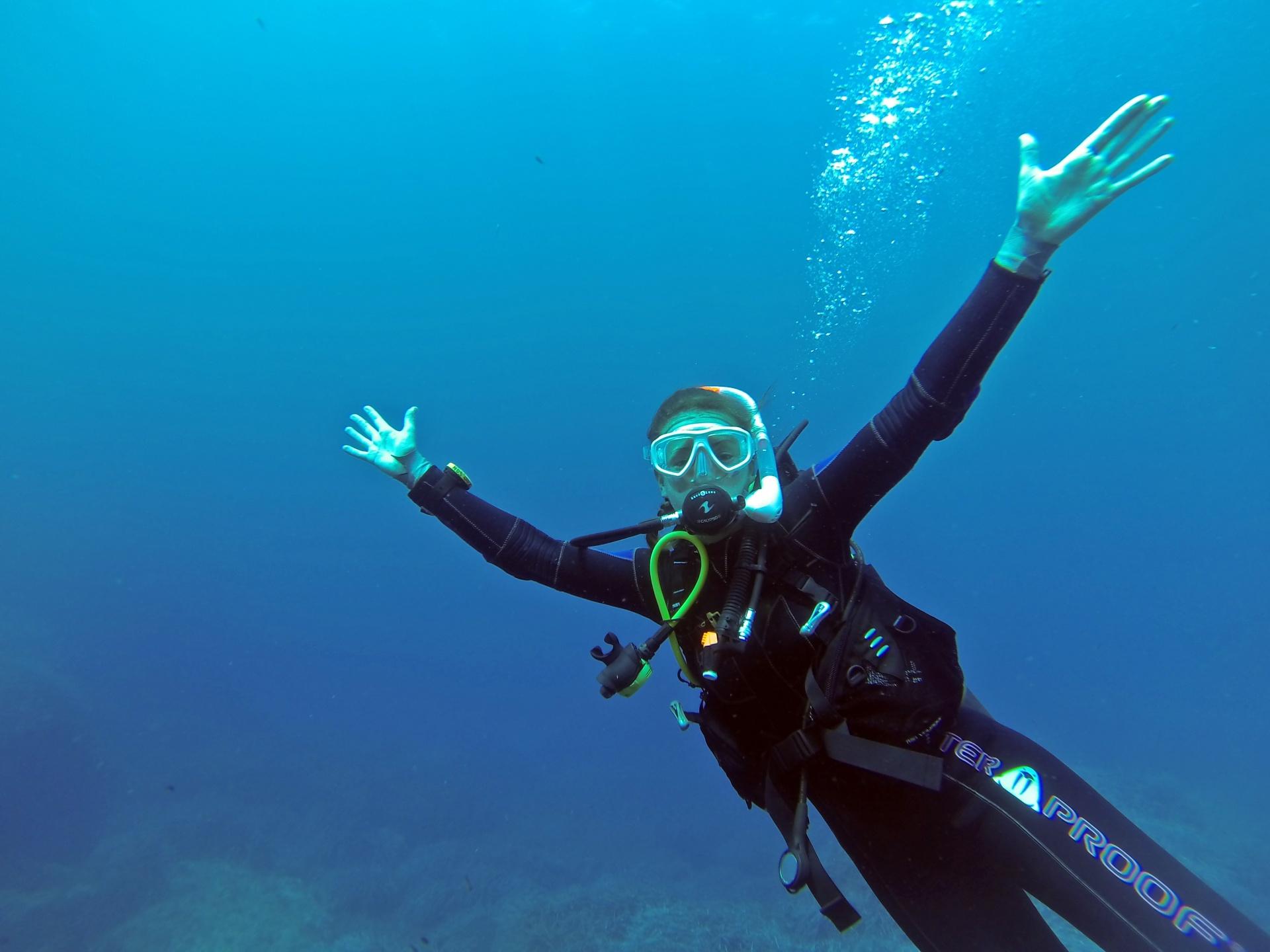 The 10 Best Marine Biology Colleges College Magazine