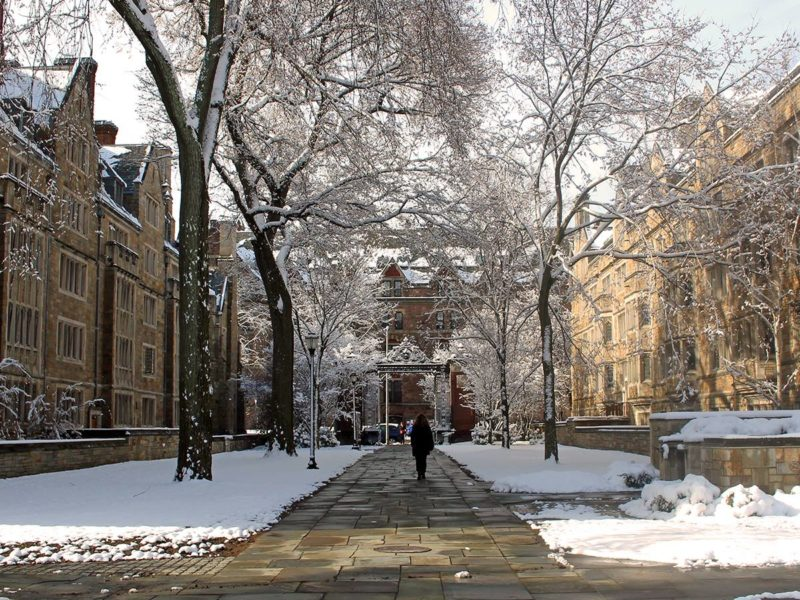 yale campus snow colleges for feminists