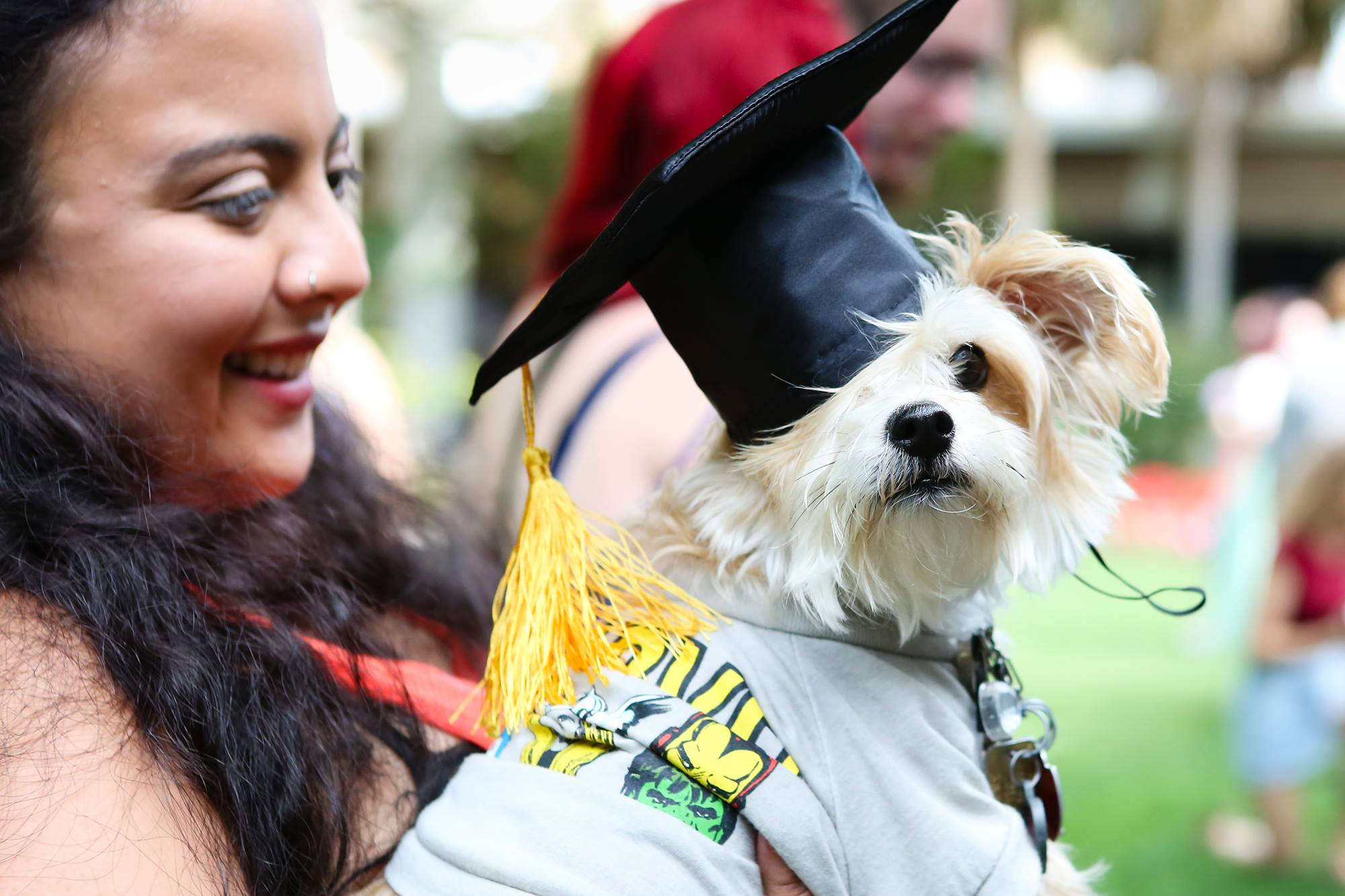 pet-friendly colleges
