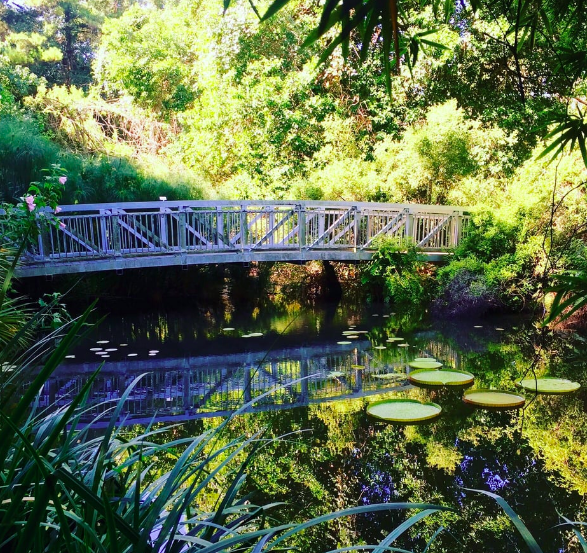 botanical gardens gainesville day trips