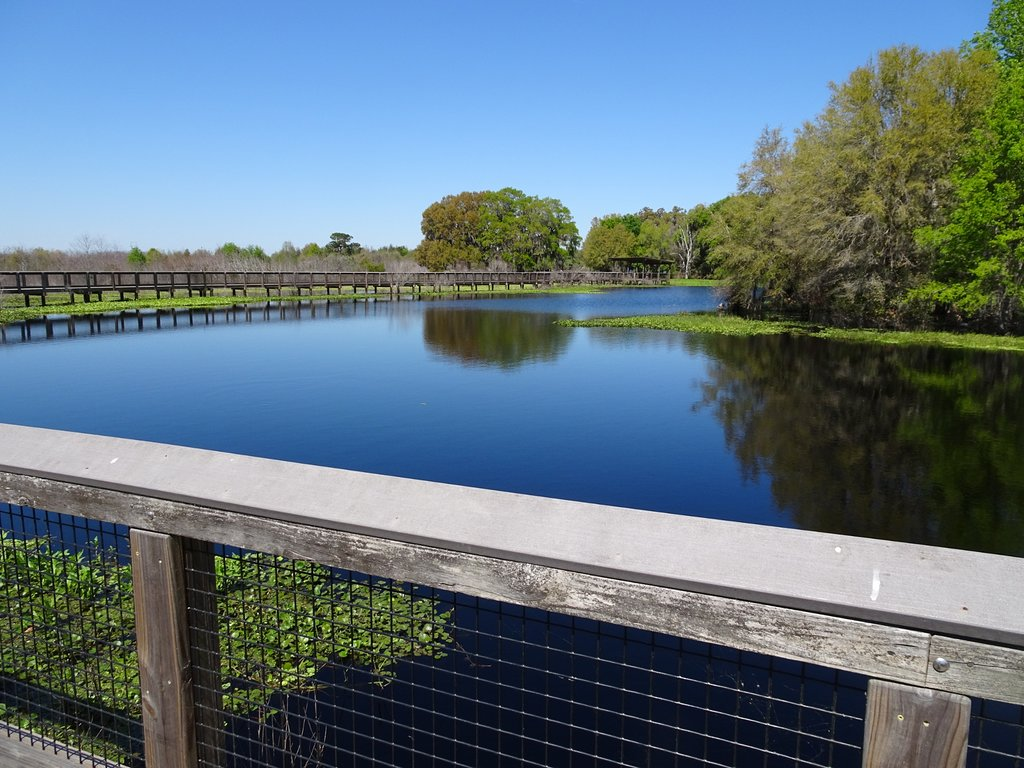 10 Day Trips For Gators To Explore The Sunshine State College Magazine