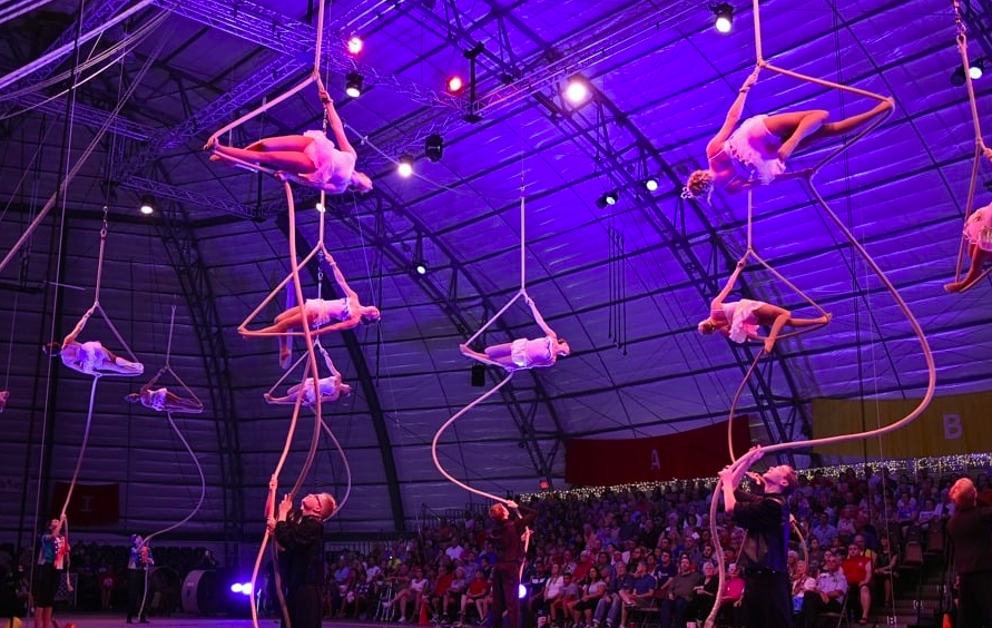 circus acrobats things to do in sarasota