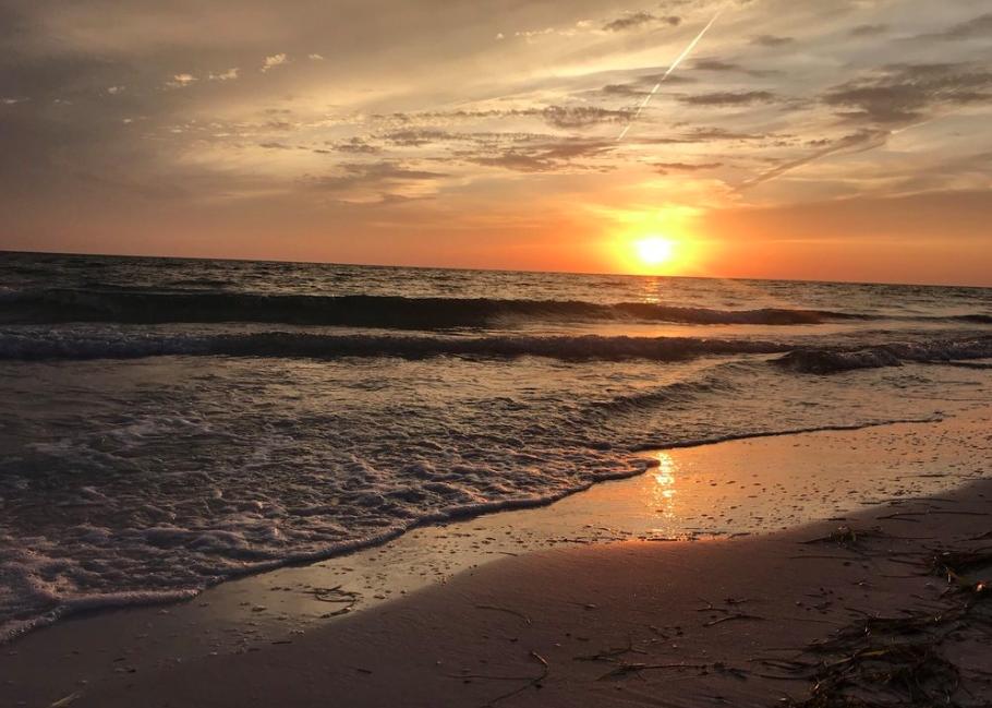 beach sunset things to do in sarasota