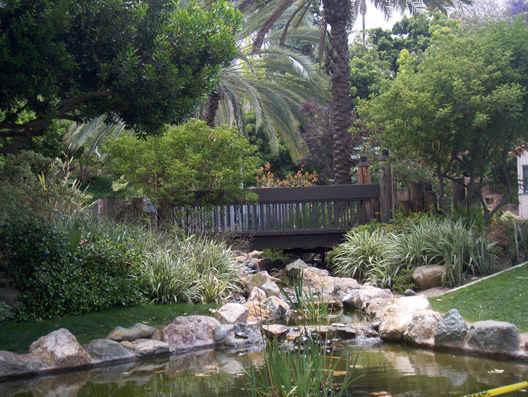 turtle pond san diego state chill spot