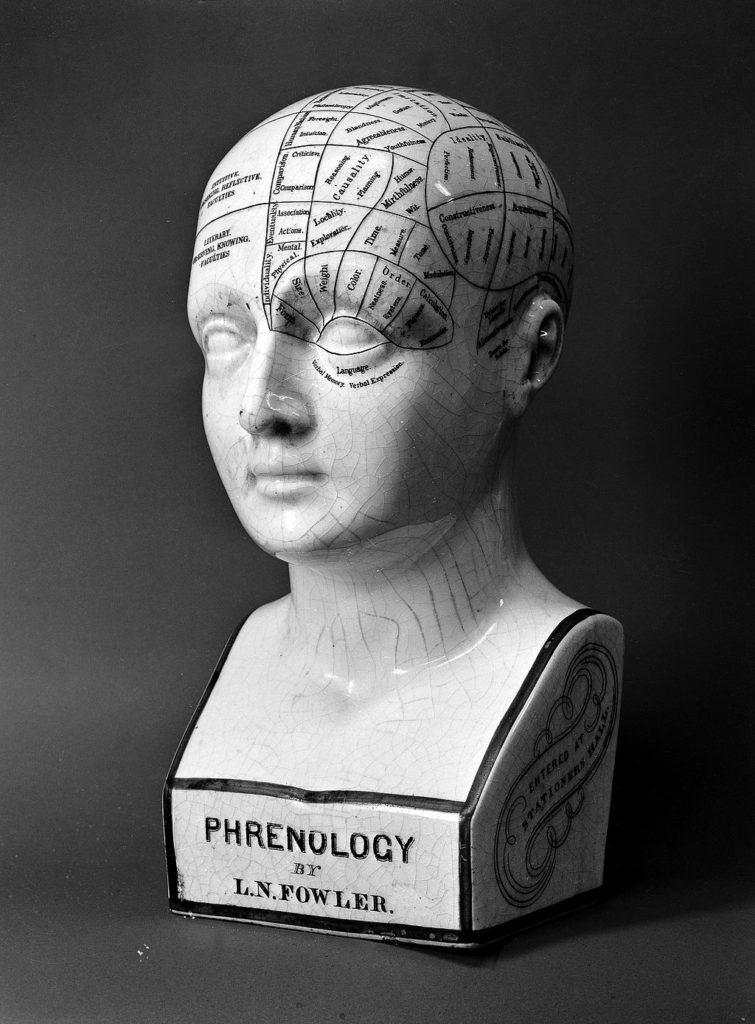 head model medical majors
