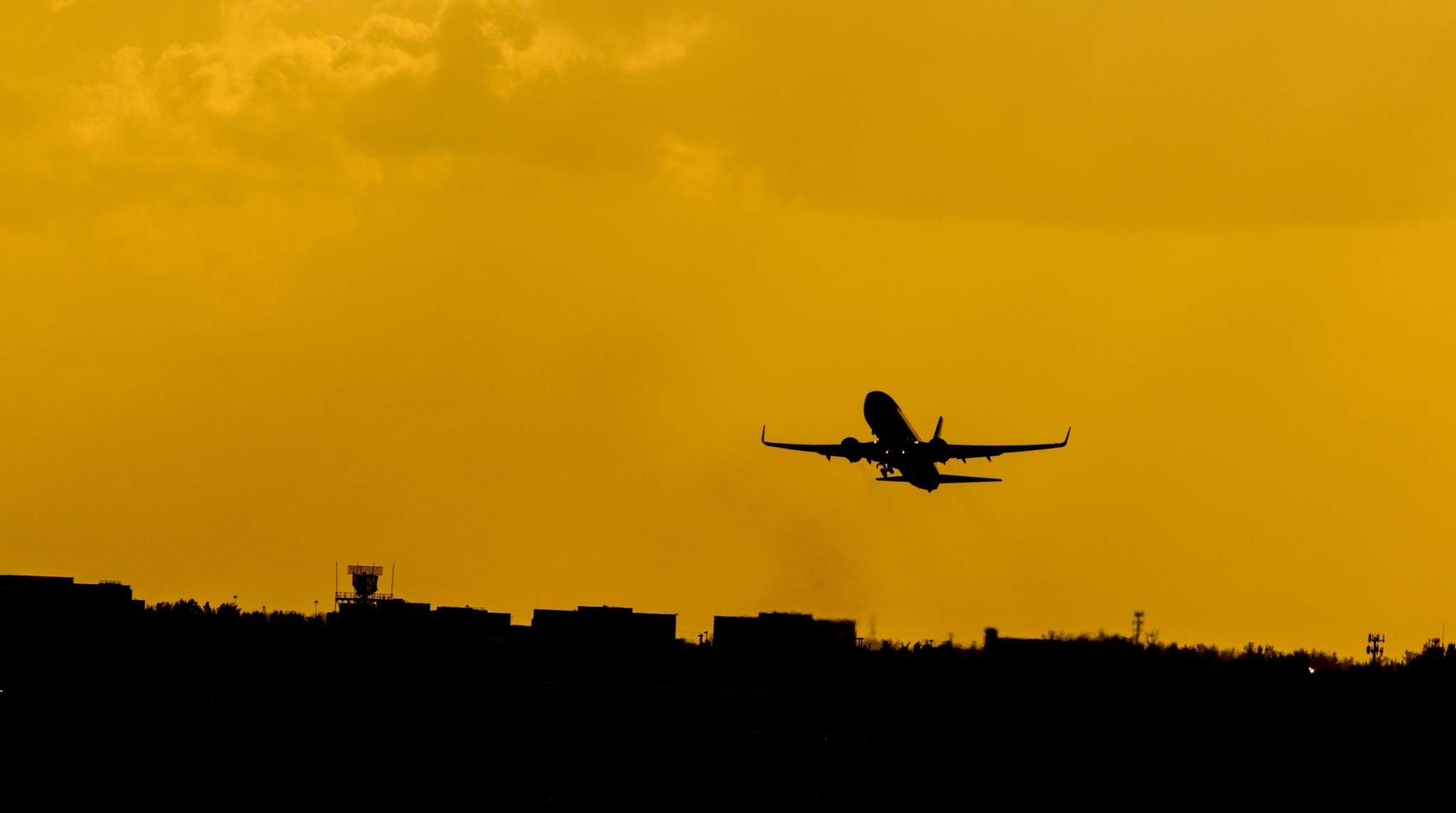Airplane Flying- CM