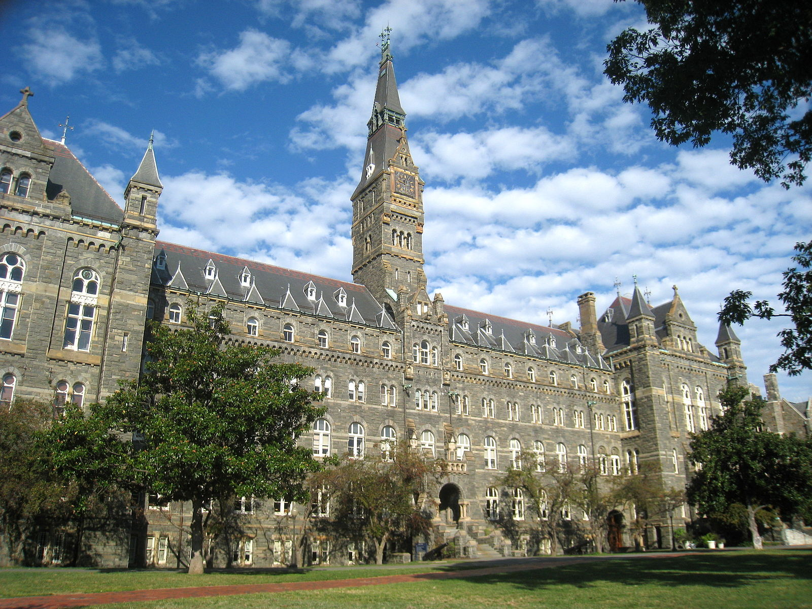 best pre med colleges georgetown