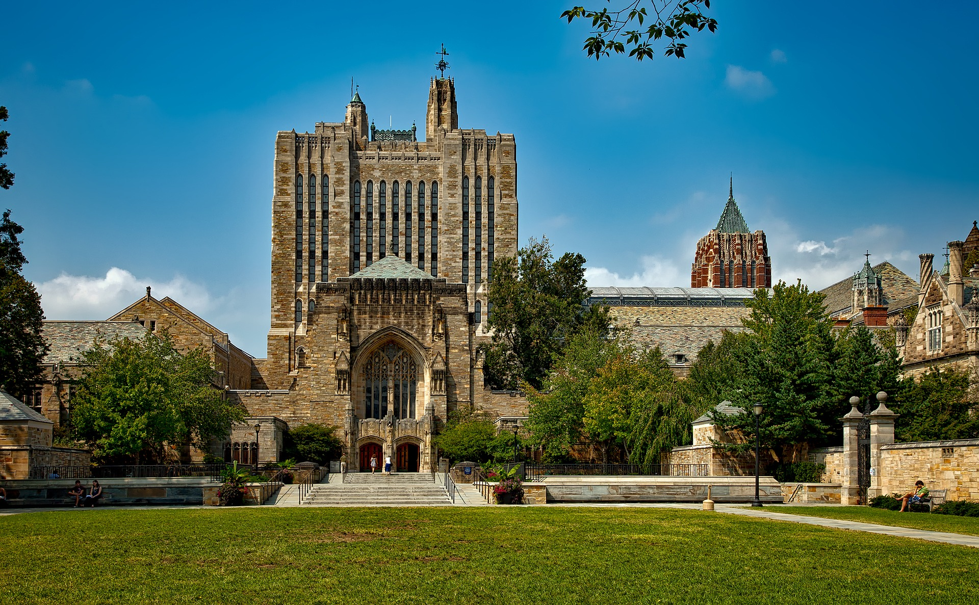 yale university best school for premed