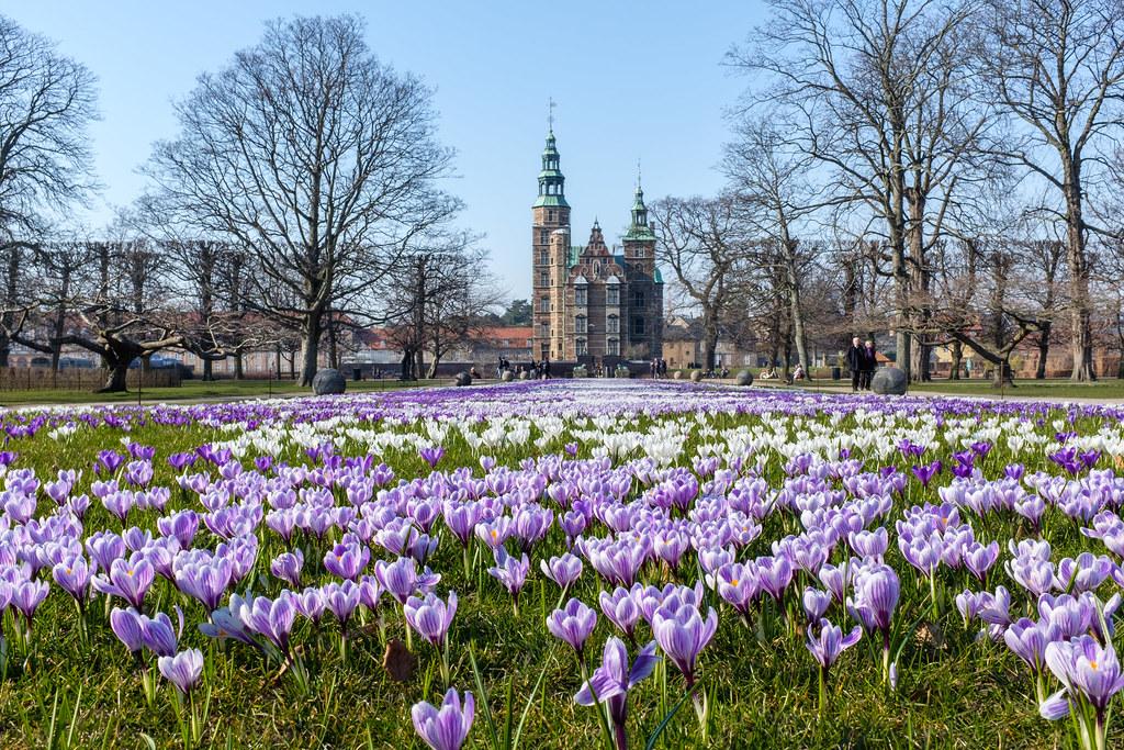 things to do in Copenhagen