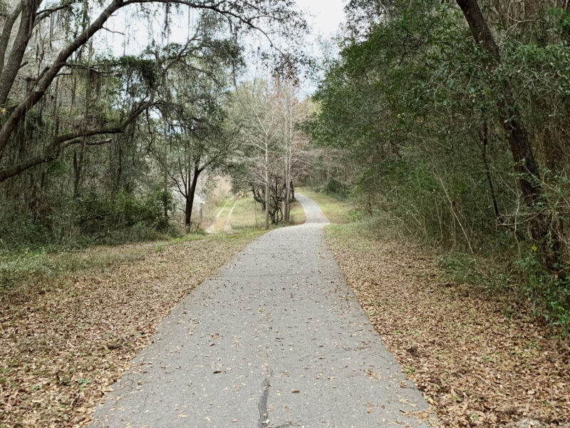 A bike trail covered by shade in Gainesville, Florida.
