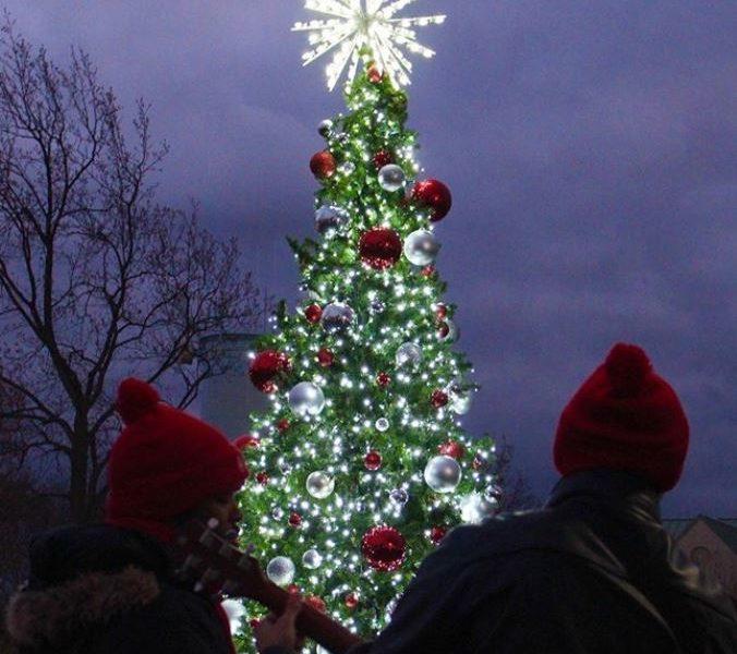 sju tree lighting