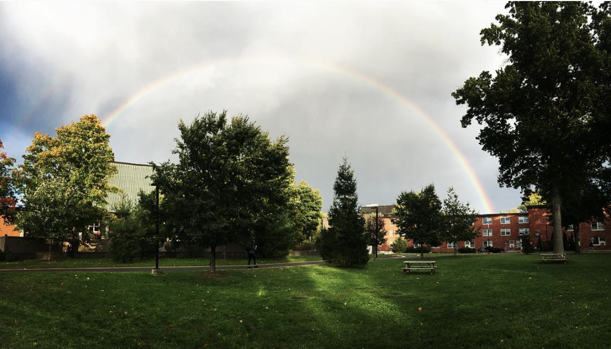new paltz with a rainbow over trees