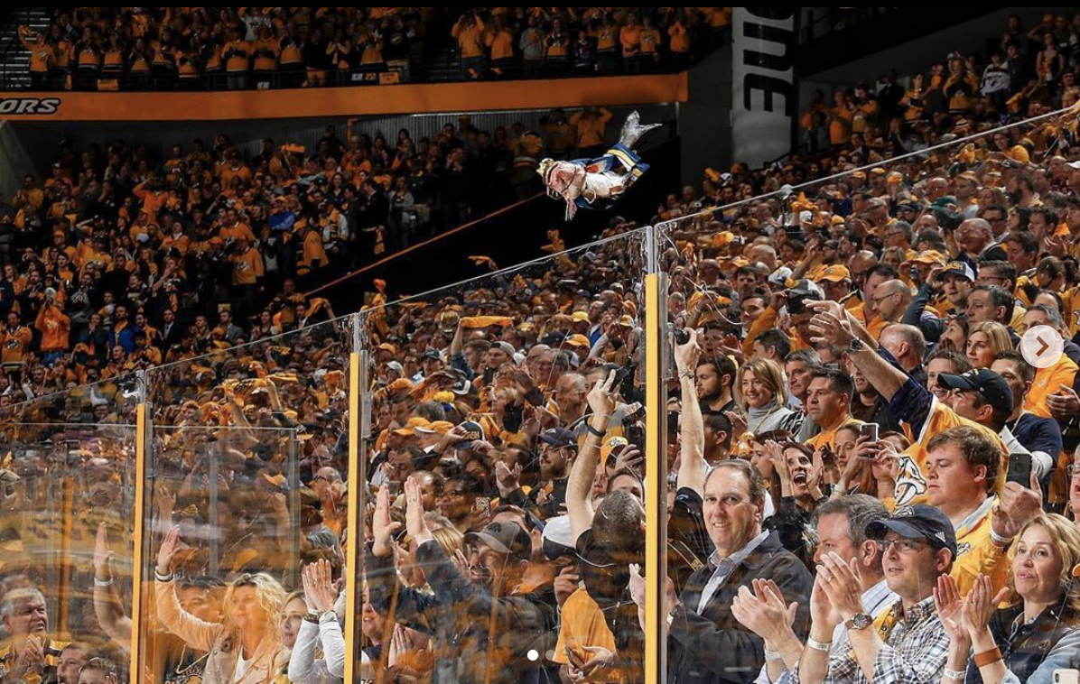 a catfish being thrown onto the ice at a Nashville Predators hockey game