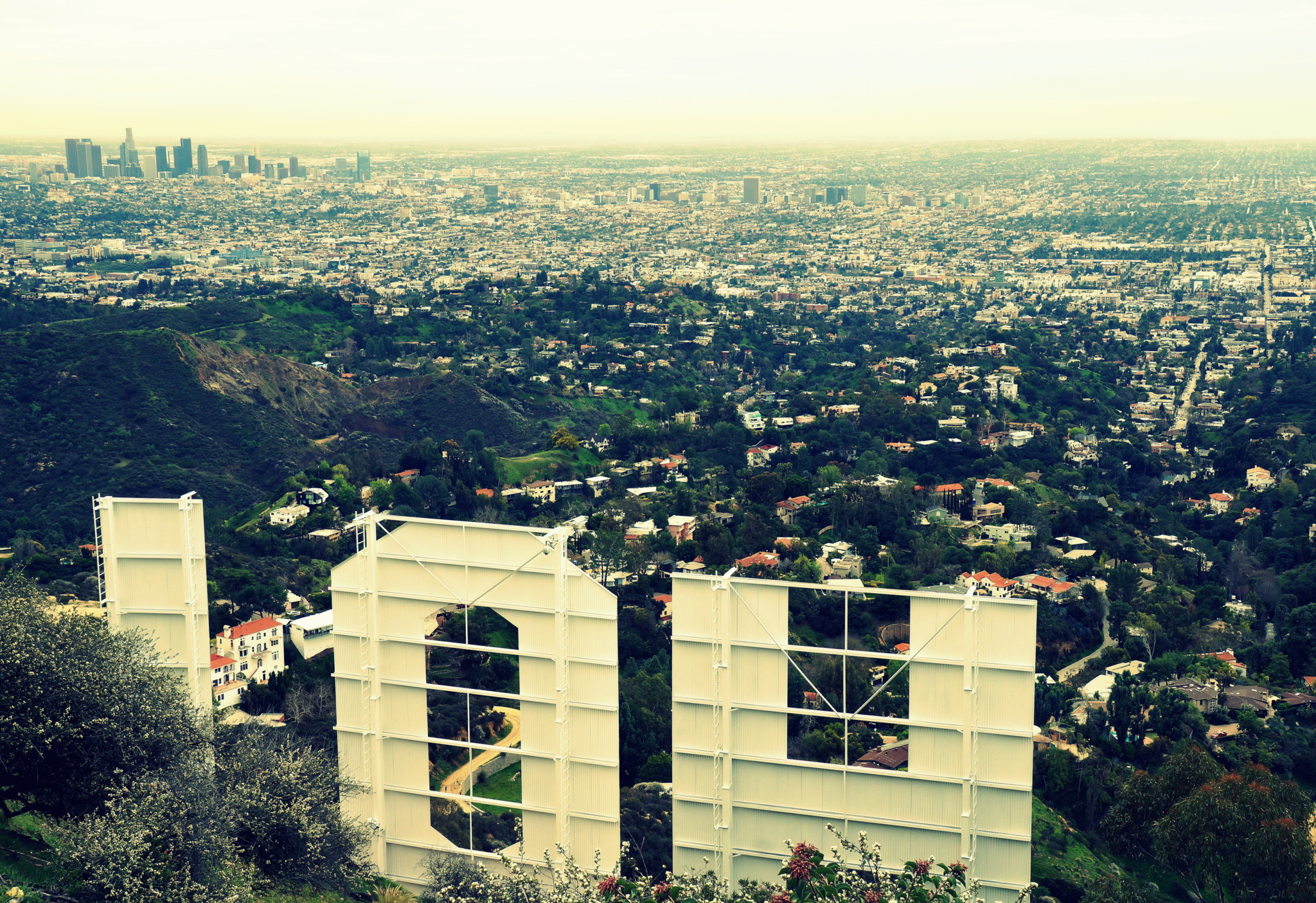 photo take from behind the Hollywood sign overlooking Los Angeles